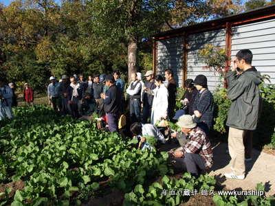 昨日は有機農業研究会の現地検討会。ということで、雲仙の岩崎さんの畑にお邪魔してきました。